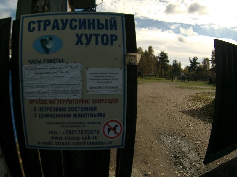 """""""Страусиный хутор"""", Белоостров"""