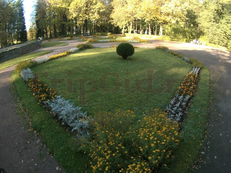Большие круги, Павловский парк, Павловск