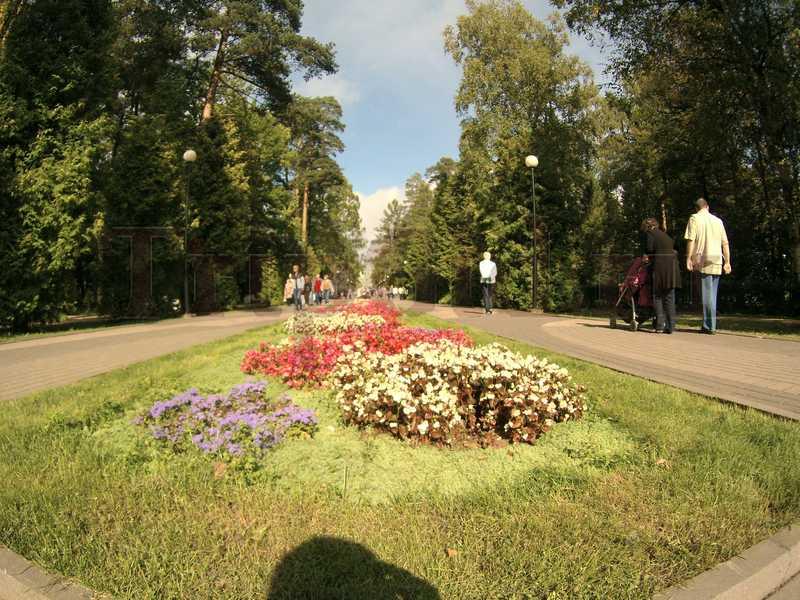 Центральная аллея, Зеленогорский парк культуры и отдыха